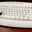 Foto de Stock  : Pointing Pen On White Keyboard