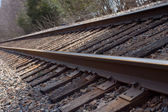 Railroad Tracks By The Woods — Stock Photo