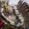 Stock Photo: Indian Dancer Of Feathers