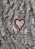 Amour en forme de coeur — Photo