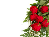 Red Roses With Copy Space — Stock Photo