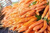 Grande mazzo di carote — Foto Stock