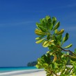 Paradise view — Stock Photo