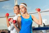 Bodybuilding — Zdjęcie stockowe