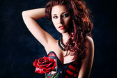 Rose love — Stock Photo
