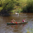 Rowers on river - Photo