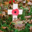 Remembrance day - Stock Photo