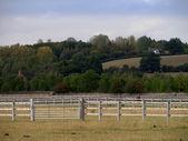 Racecourse stratford upon avon warwickshire england uk — Stock Photo