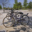 Bicycles — Stockfoto #11719088