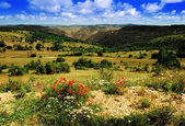 View over the cevennes national park, lozere, languedoc-roussilon, france - looking to the gorges du tarn — Stock Photo
