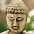 Buddha head — Foto Stock #10771344