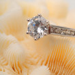 Foto Stock: Diamond engagement ring on coral