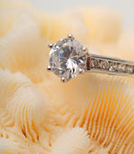Diamond engagement ring on coral — Stock Photo