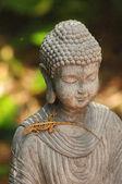 ящерица и будда — Стоковое фото