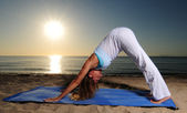 Downward facing dog yoga pose — Stockfoto