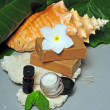Beach themed day spa products — ストック写真