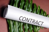 Green contract — Stock Photo