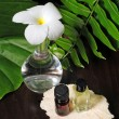 Stock Photo: Flower and essential oils