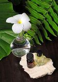 Flores e óleos essenciais — Foto Stock
