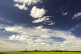 The sky above the field. — Stockfoto