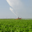 Irrigation on a field — Stock Photo