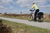 Cyclist at the Elspeetsche Heather — Stock Photo