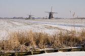 Aarlanderveen yakınlarında iki değirmen — Stok fotoğraf