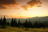 Beautiful summer landscape in the mountains — Stock Photo