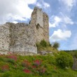 Richard Lion Heart Castle ruins - Panorama - Stock Photo