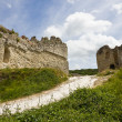Richard Lion Heart Castle ruins — Stock Photo