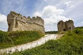 Richard Lion Heart Castle ruins — Stock Photo