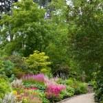Floral Park — Stock Photo