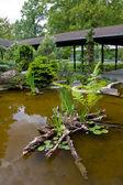 Azjatycki ogród — Zdjęcie stockowe