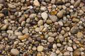 Wet beach pebbles — Stock Photo