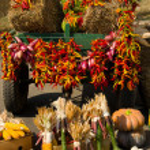 Autumn cart — Stock Photo