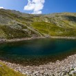 Iezer Glacier Lake - Panorama — Stock Photo #11420235
