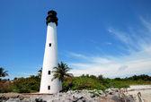 Cape florida — Stock fotografie