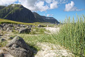 Lofoten VI — Stock Photo