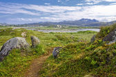 Lofoten III — Stock Photo