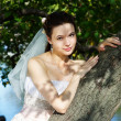 Beautiful bride in wedding dress stands near tree in park — Stock Photo #10885580