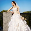 Beautiful bride in a wedding dress in park - Foto Stock
