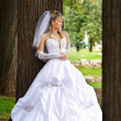 Stock Photo: Bride in wedding stroll