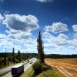 Truck on the road — Stock Photo #12029097