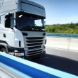 Truck on the road — Stock Photo #12372906