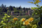 Alhambra - Royal complex palace — Stock Photo