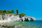 Stoney beach — Stok fotoğraf