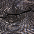 Wood broken texture — Stock Photo