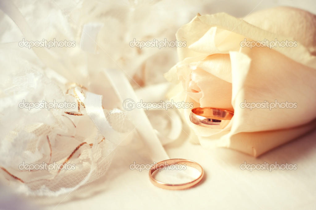 Wedding rings with rose — Stock Photo #11081507