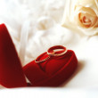 Stock Photo: Wedding rings with rose