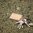 Lost bunch of keys on the road — Stock Photo #10819333